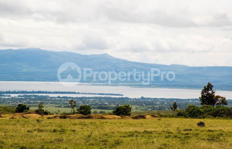 Land for sale Nakuru Rift Valley, Naivasha, Naivasha Naivasha Naivasha - 5