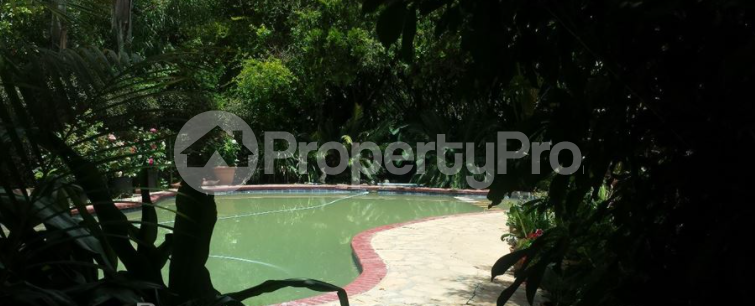 7 bedroom Townhouses Garden Flat for rent Borrowdale Brooke Harare North Harare - 4