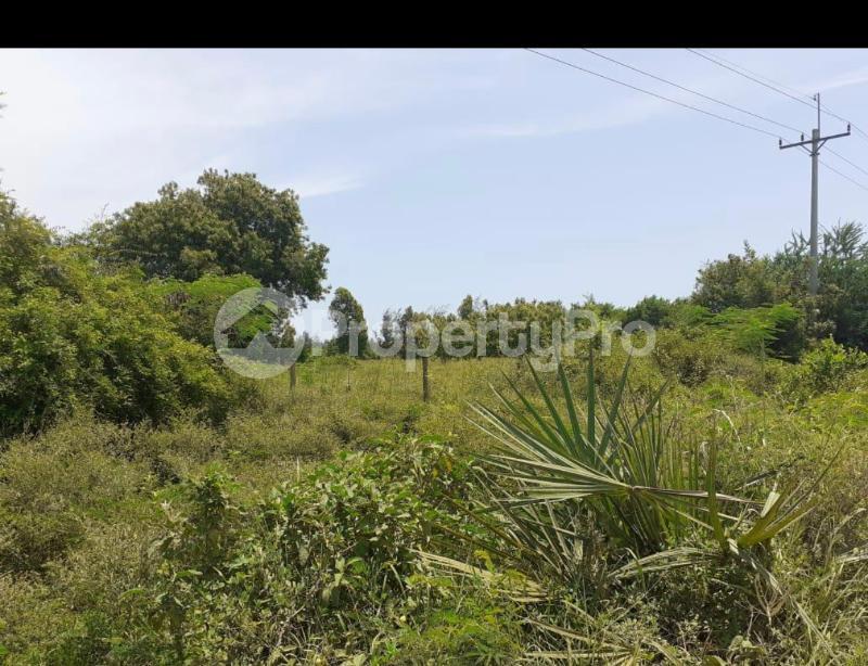 Land for sale Vipingo  Kilifi North Kilifi - 3