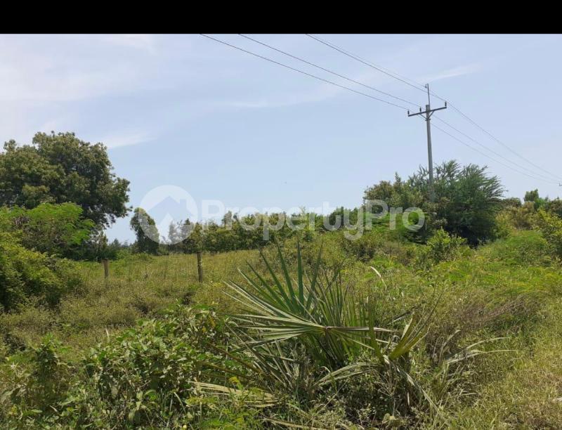 Land for sale Vipingo  Kilifi North Kilifi - 2