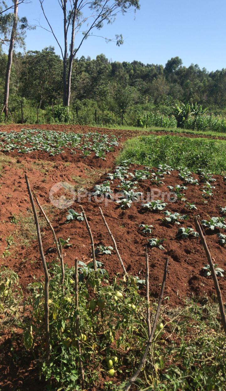 Land for sale Kisumu, Kisumu CBD Kisumu CBD Kisumu - 5