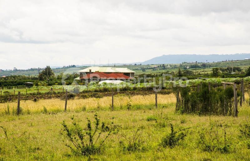 Land for sale Nakuru Rift Valley, Naivasha, Naivasha Naivasha Naivasha - 6
