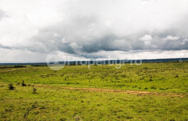 Land for sale Nakuru Rift Valley, Naivasha, Naivasha Naivasha Naivasha - 8