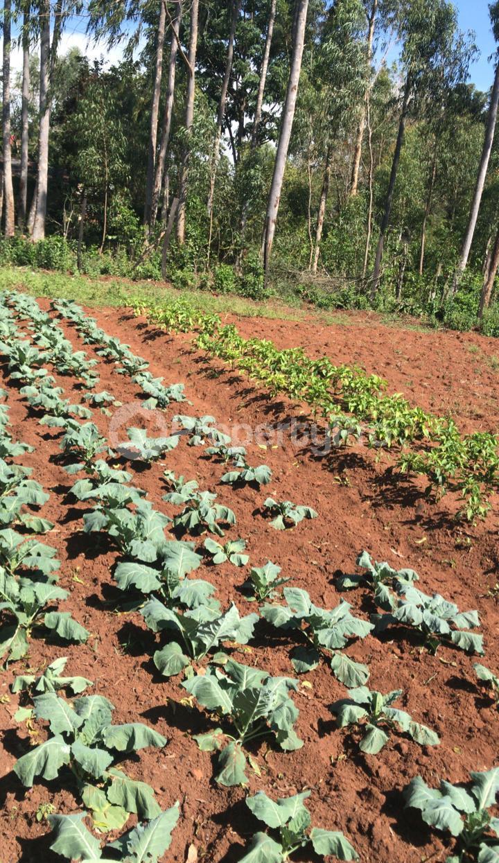 Land for sale Kisumu, Kisumu CBD Kisumu CBD Kisumu - 0