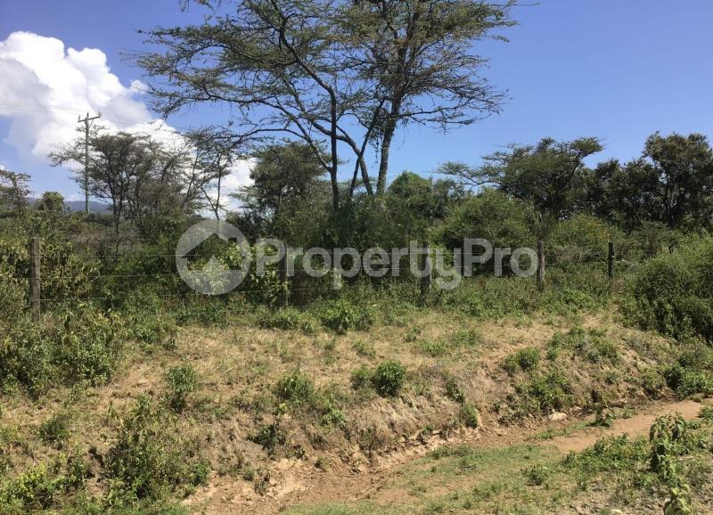 Land for sale Unnamed Road Nakuru County, Elementaita, Nakuru Elementaita Nakuru - 3