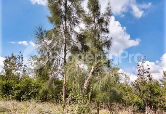 Land for sale Prime 1/8th Acre Plots Near Kandisi Police Post Within Rimpa Area FOR Sale, Ongata Rongai,... Ongata Rongai Nairobi - 4