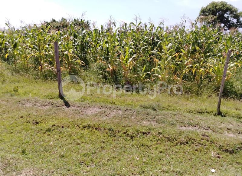 Land for sale Elementaita Nakuru County, Nakuru Town, Nakuru Nakuru Town Nakuru - 3