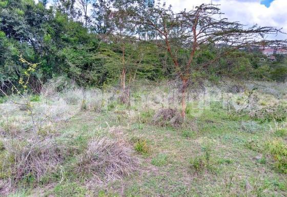 Land for sale Prime 1/8th Acre Plots Near Kandisi Police Post Within Rimpa Area FOR Sale, Ongata Rongai,... Ongata Rongai Nairobi - 5