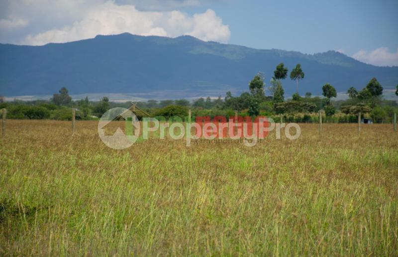 Land for sale Elementaita Nakuru County, Nakuru Town, Nakuru Nakuru Town Nakuru - 8