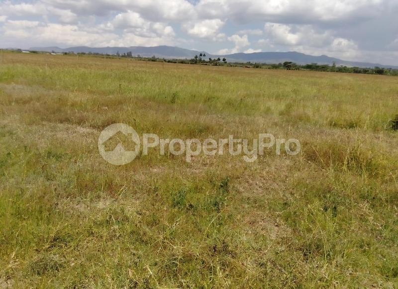 Land for sale Elementaita Nakuru County, Nakuru Town, Nakuru Nakuru Town Nakuru - 5