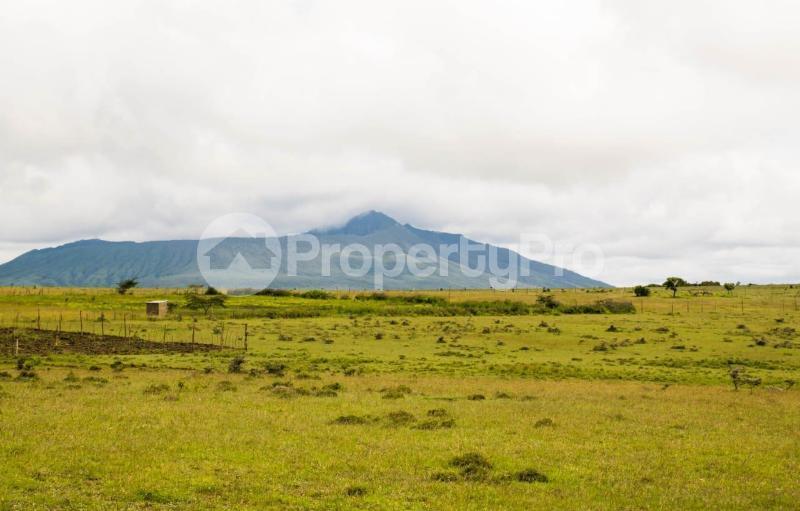 Land for sale Nakuru Rift Valley, Naivasha, Naivasha Naivasha Naivasha - 2