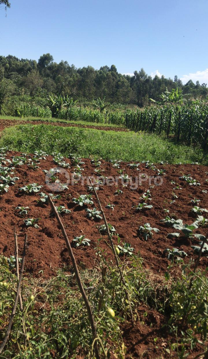 Land for sale Kisumu, Kisumu CBD Kisumu CBD Kisumu - 4