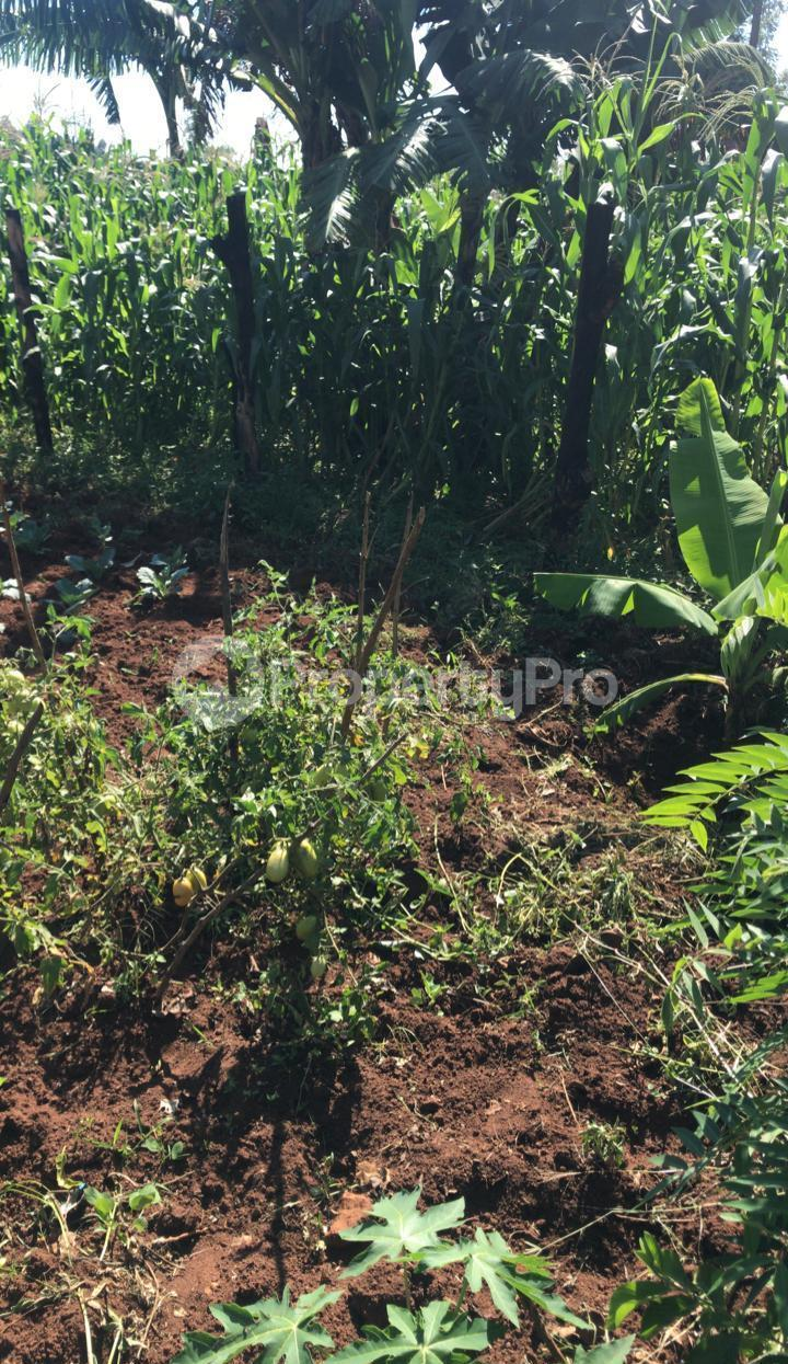 Land for sale Kisumu, Kisumu CBD Kisumu CBD Kisumu - 7