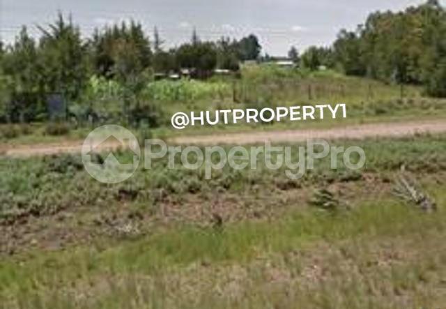 Land for sale Nyahururu Nyandarua County, Nyahururu, Nyahururu Nyahururu Nyahururu - 4