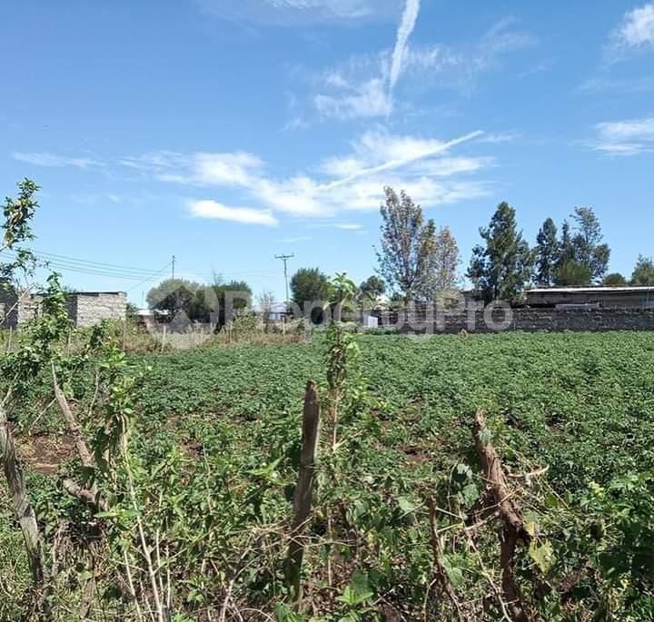 Land for sale Nakuru - Nairobi Rd Gilgil, Naivasha, Naivasha Naivasha Naivasha - 0