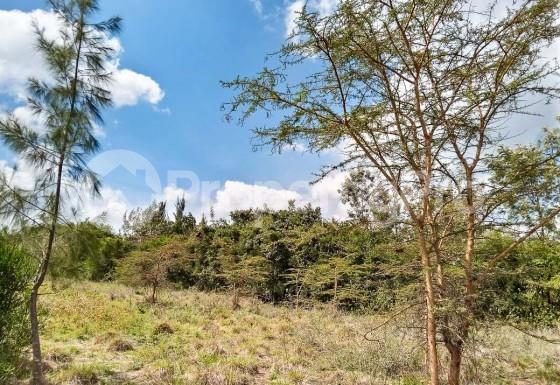 Land for sale Prime 1/8th Acre Plots Near Kandisi Police Post Within Rimpa Area FOR Sale, Ongata Rongai,... Ongata Rongai Nairobi - 3