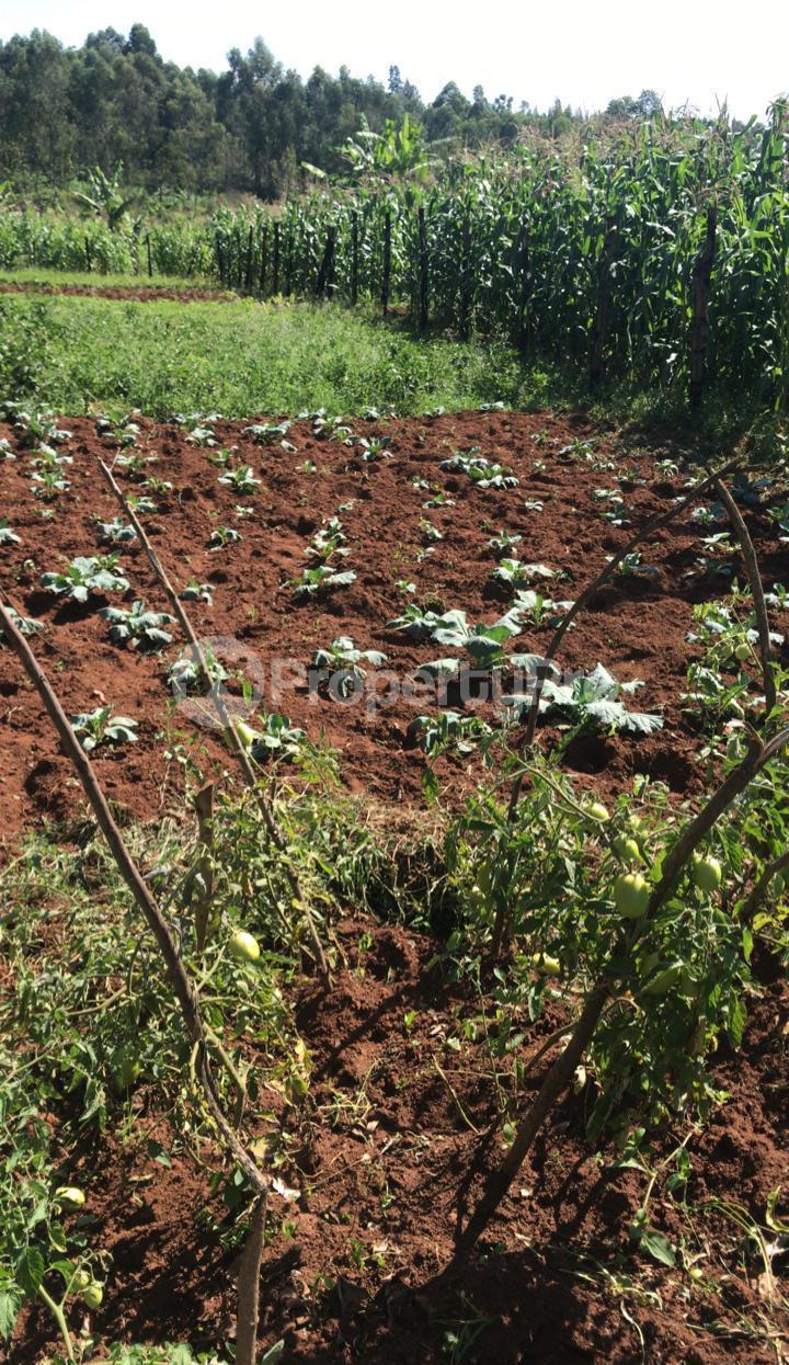 Land for sale Kisumu, Kisumu CBD Kisumu CBD Kisumu - 6