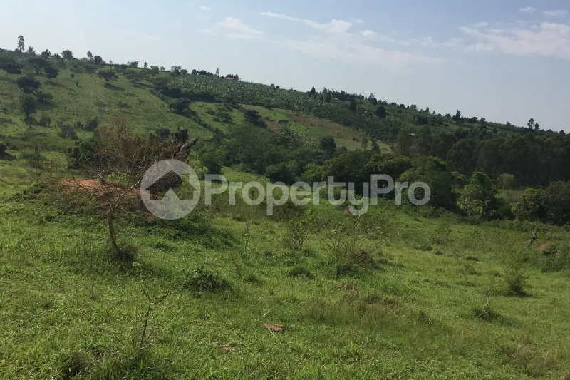 Land for sale Mbarara Western - 0