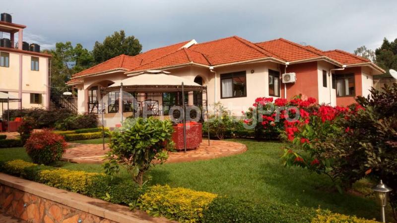 2 bedroom Apartment Block Apartment for shortlet Clive Road Jinja Jinja Eastern - 1