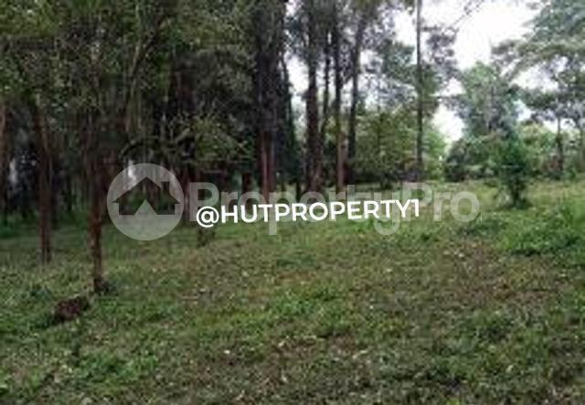 Land for sale Nyahururu Nyandarua County, Nyahururu, Nyahururu Nyahururu Nyahururu - 0