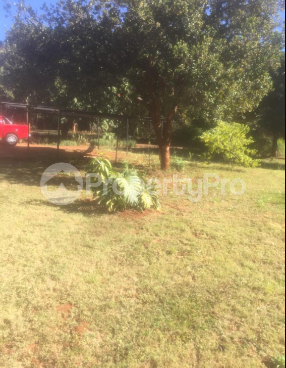 4 bedroom Houses for rent Borrowdale Brooke Harare North Harare - 1