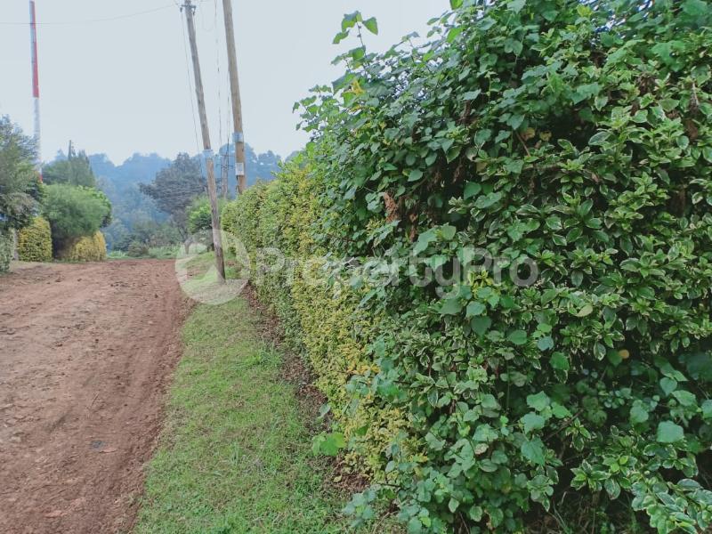 Residential Land for sale Kikuyu Kiambu - 5