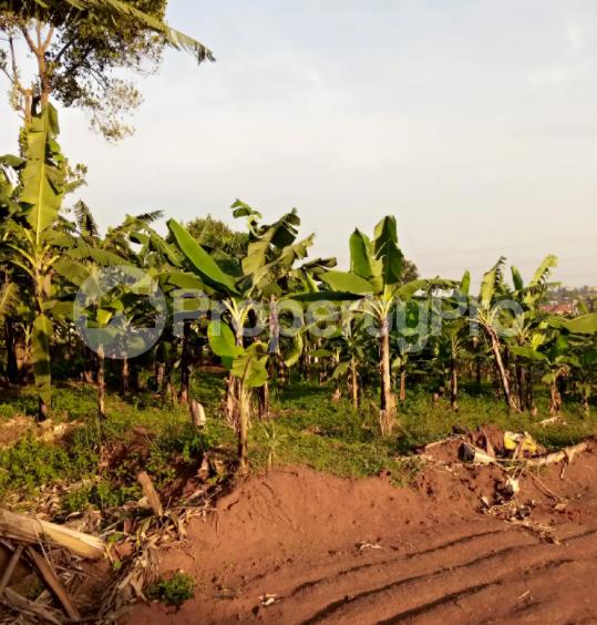 Land for sale Kasanda Central - 2