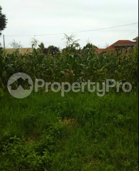 Land for sale Kasanda Central - 0