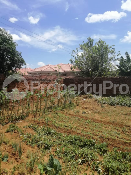Stands & Residential land Land for sale Tynwald South Tynwald Harare West Harare - 1