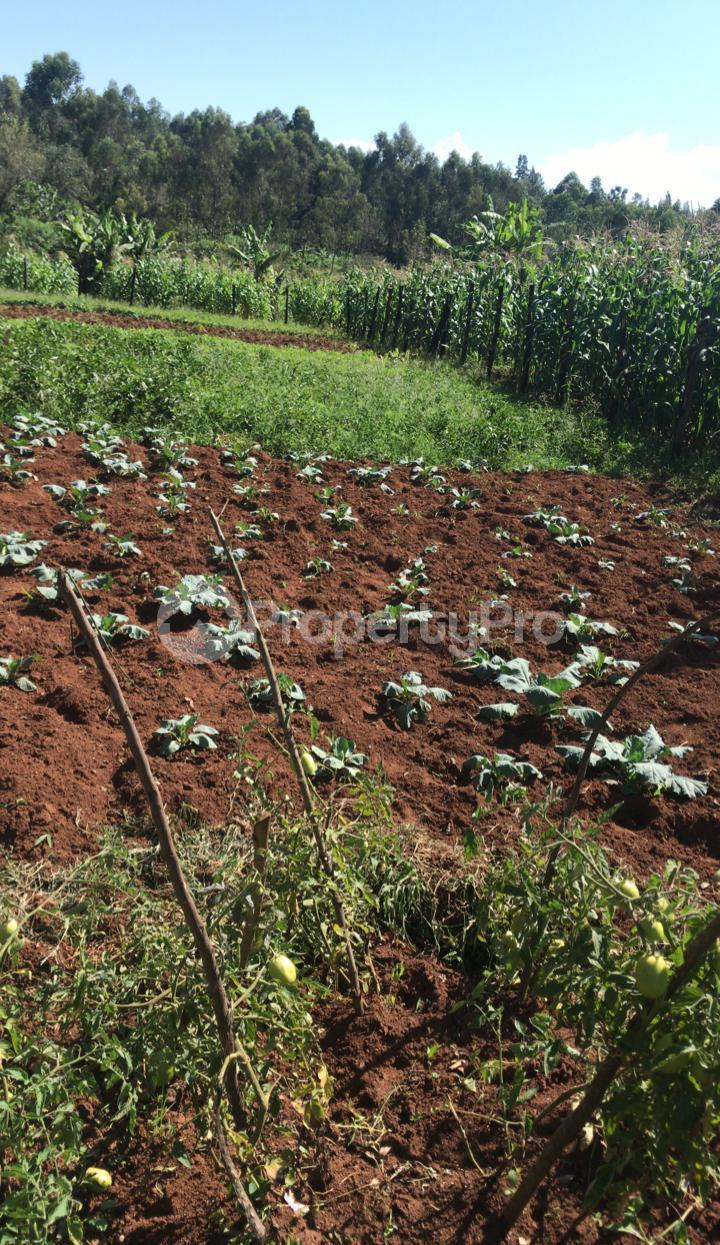 Land for sale Kisumu, Kisumu CBD Kisumu CBD Kisumu - 2
