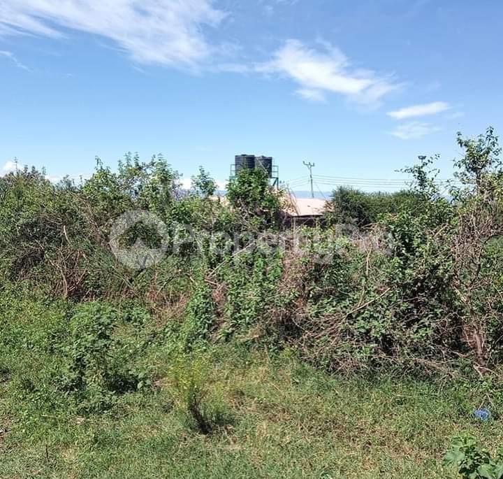 Land for sale Nakuru - Nairobi Rd Gilgil, Naivasha, Naivasha Naivasha Naivasha - 2