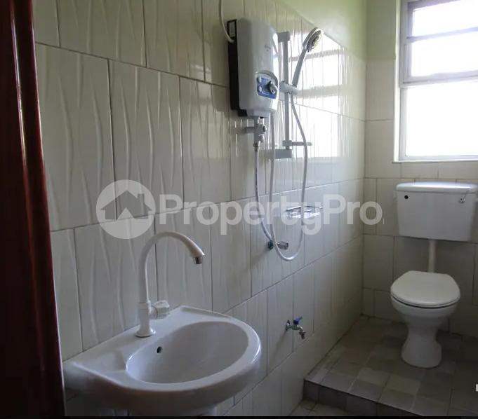 1 bedroom mini flat  Apartment for rent Jinja Eastern - 3