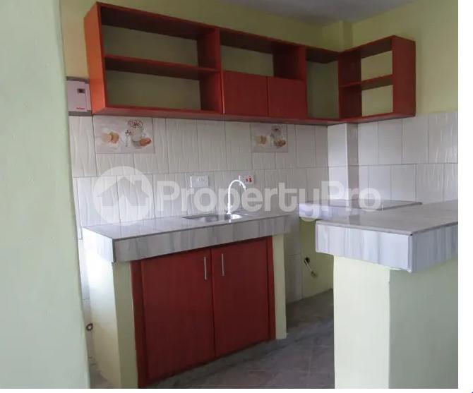 1 bedroom mini flat  Apartment for rent Jinja Eastern - 1
