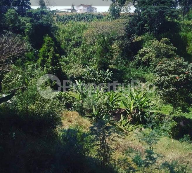 Land for sale ... Kitisuru Nairobi - 1