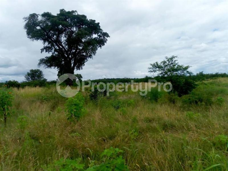 Farm & Agricultural land Land for sale Chicago Kwekwe Midlands - 1