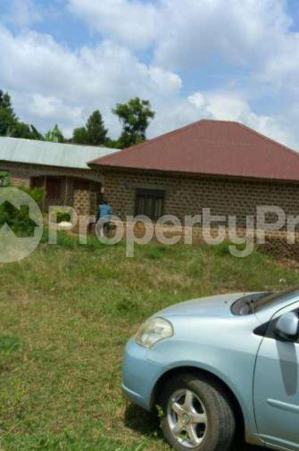 Land for sale Kisoro Western - 1