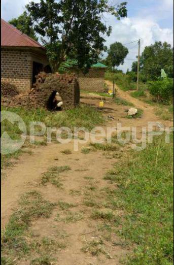 Land for sale Kisoro Western - 2