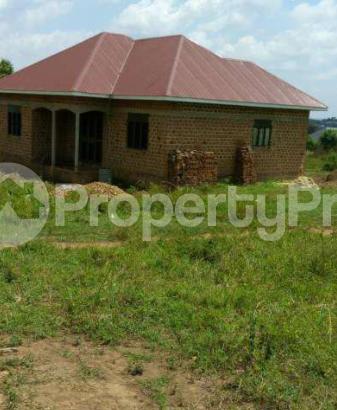 Land for sale Kisoro Western - 0