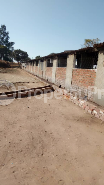 Farm & Agricultural land Land for sale Granary Kuwadzana Harare High Density Harare - 1