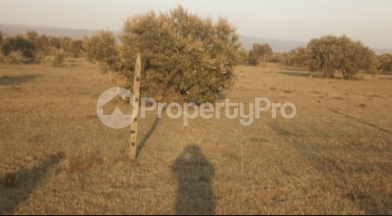 Agricultural Land for sale Mbirikani/Eselenkei Kajiado - 1