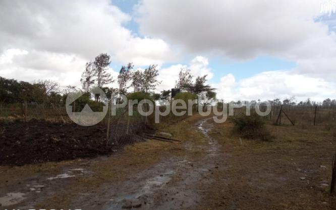 Residential Land for rent kiserian pipeline rd Ngong Kajiado - 1