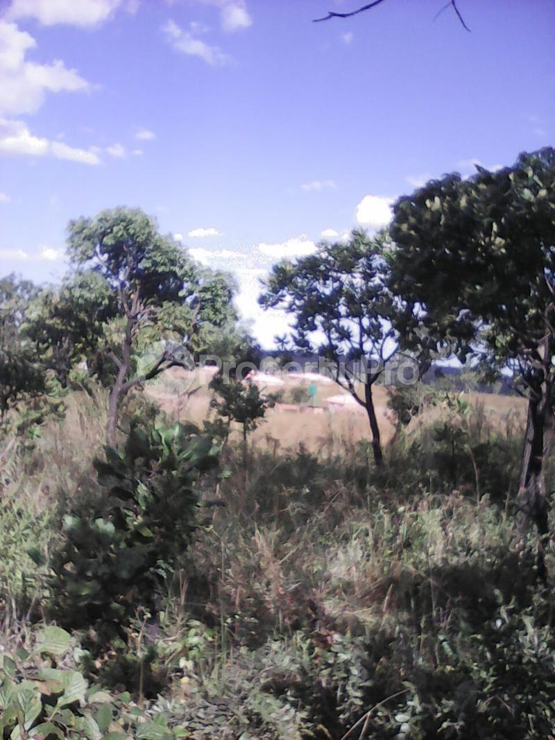 Stands & Residential land Land for sale Borrowdale Harare North Harare - 0