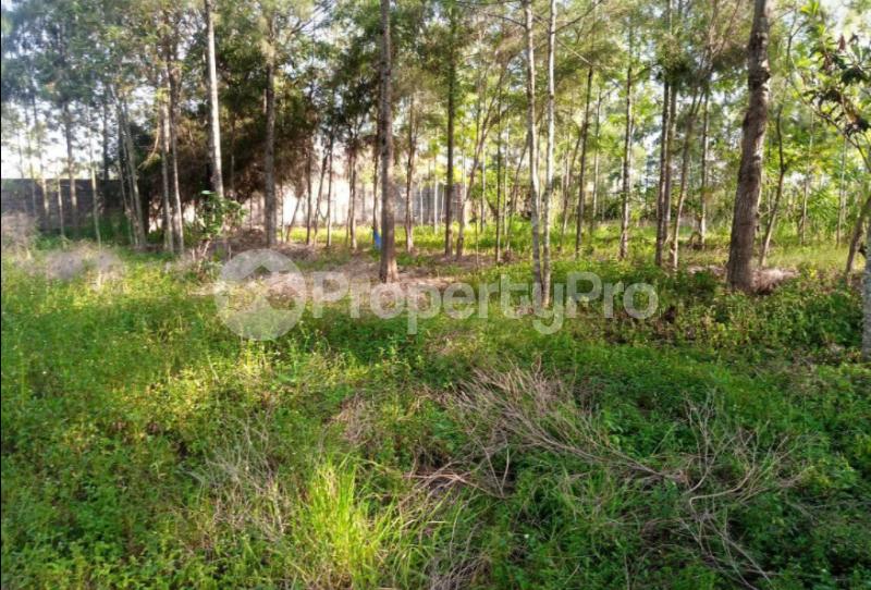 Land for sale - Kerarapon Nairobi - 1