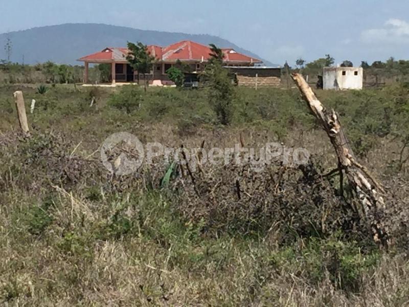 Residential Land for sale Thika Superhighway Ruiru Ruiru Kiambu - 8