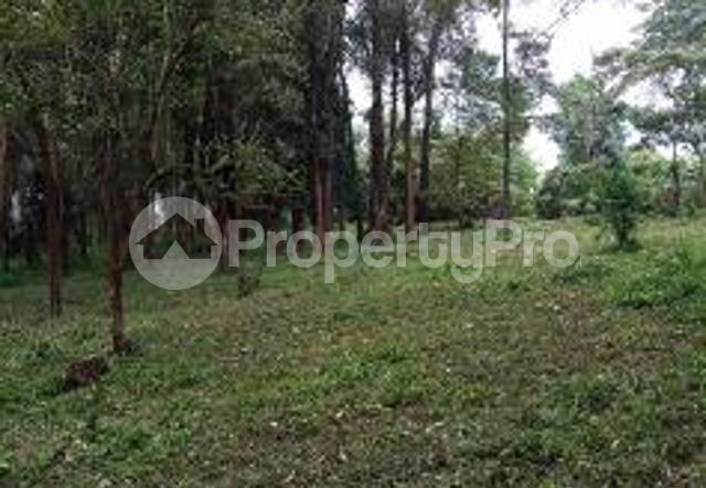 Land for sale Nyahururu Nyandarua County, Nyahururu, Nyahururu Nyahururu Nyahururu - 1