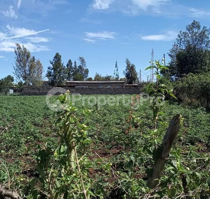 Land for sale Nakuru - Nairobi Rd Gilgil, Naivasha, Naivasha Naivasha Naivasha - 9