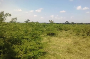 Land for sale Mpigi Central