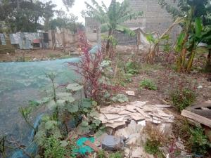 Residential Land for sale Karatina-Nyeri Road Mathira Nyeri