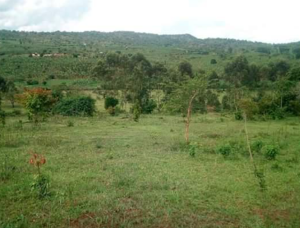 Land for sale Bushenyi Western