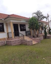 2 bedroom Apartment for rent Muyenga Kampala Central Kampala Central
